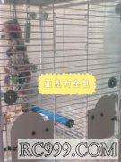 大型鸟笼.龙猫笼,松鼠笼全包亚克力